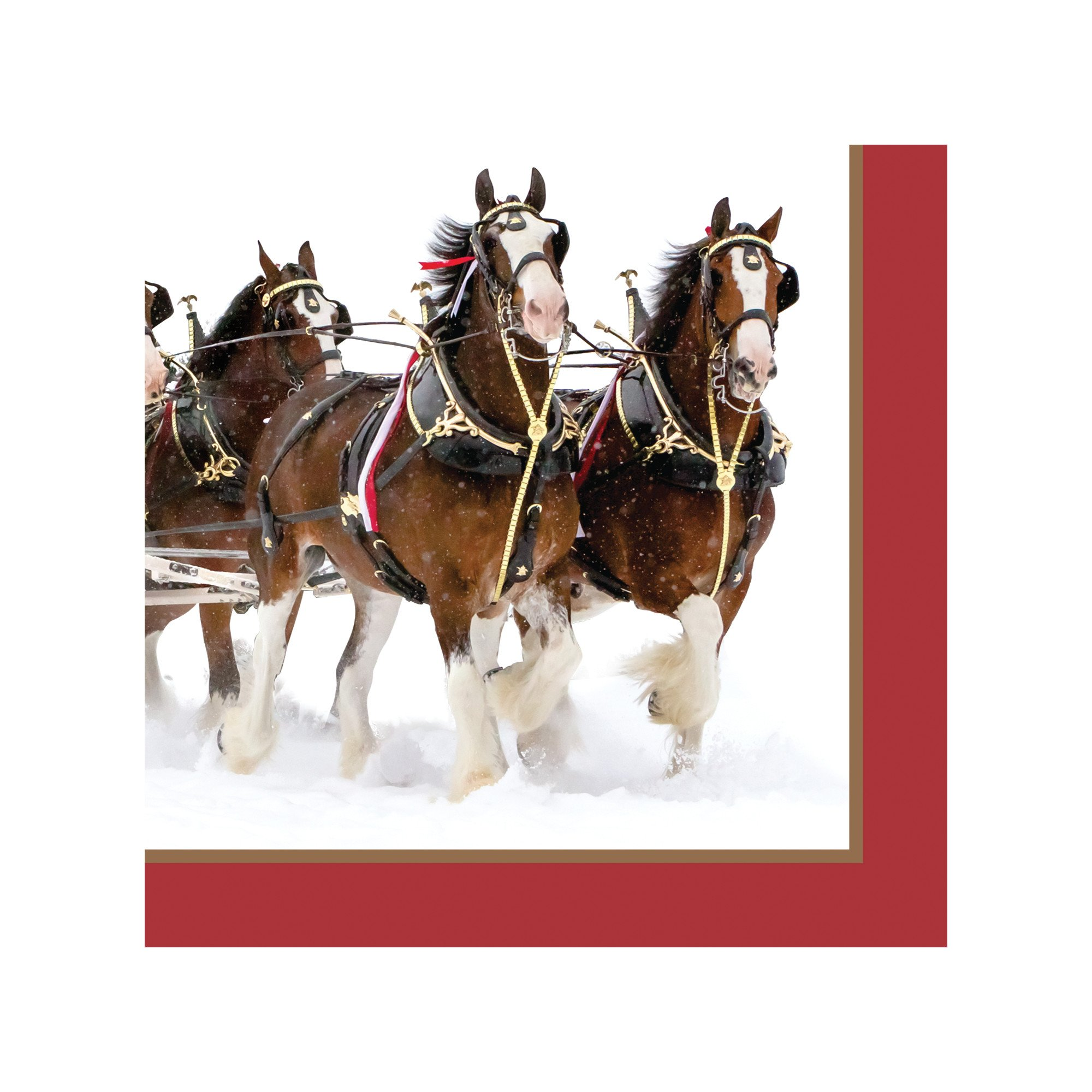 Creative Converting Budweiser 16 Count Beverage Napkins, Budweiser Clydesdale Pattern