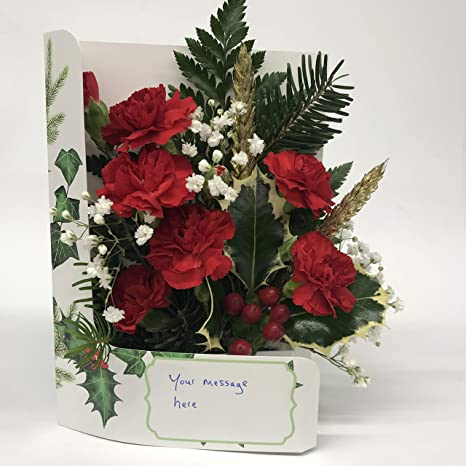 Fresh Flowers Delivered Christmas Wishes Flower Card Convenient Fits Through Letterbox Handmade Direct From Our Own Guernsey Greenhouse