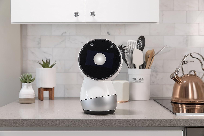 Social Robot for the Home