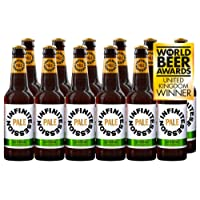 Infinite Session - Alcohol-Free Beer (Pale Ale, Case of 12 Bottles)