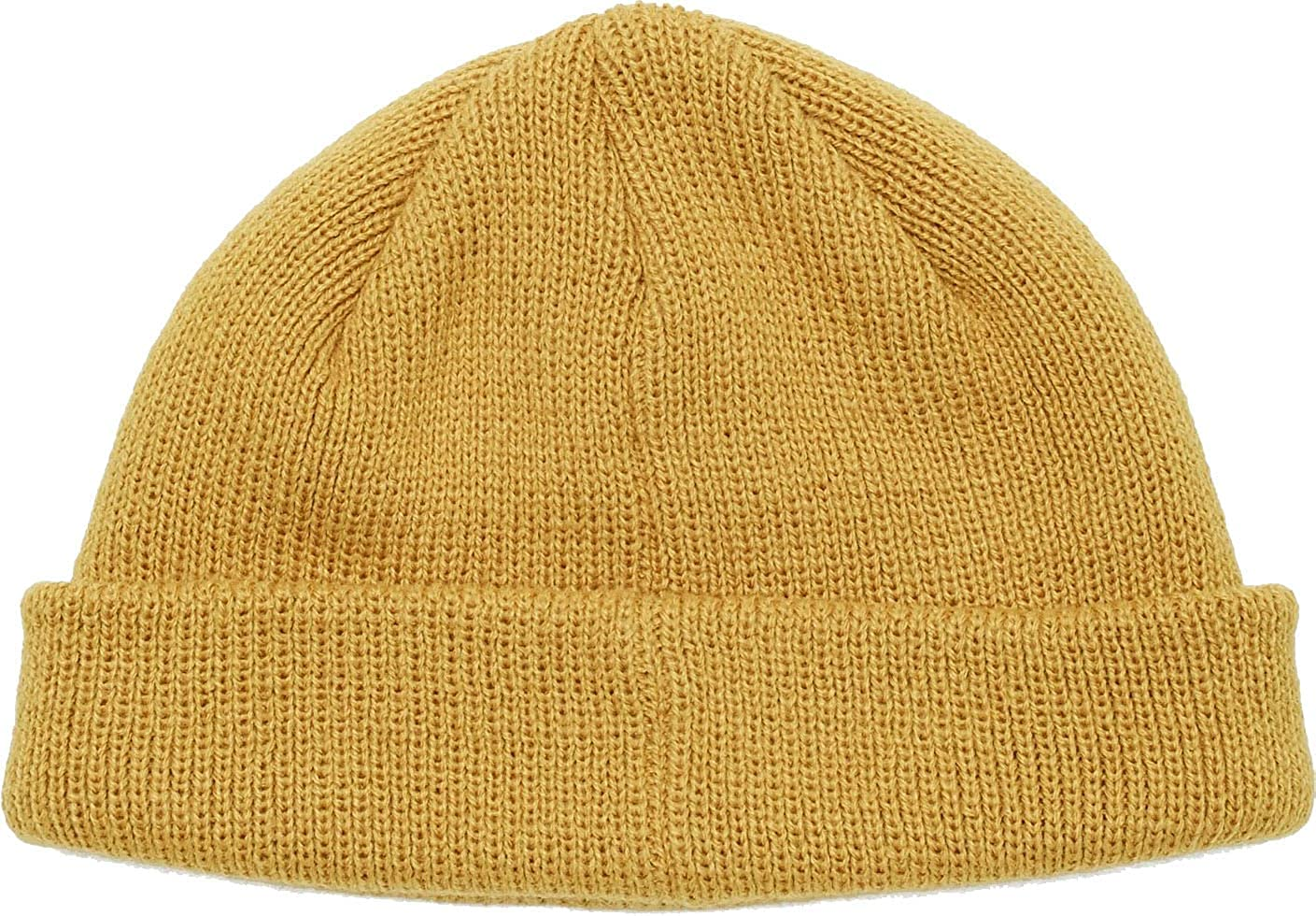 OBEY Golden palm Rollup beanie