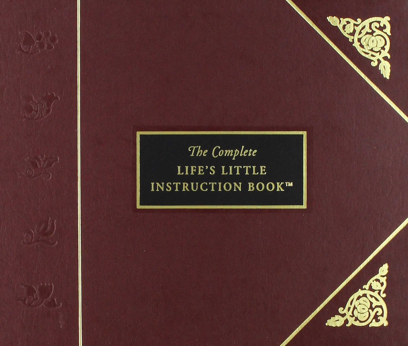Lifes Little Instruction Book: Bk. 2