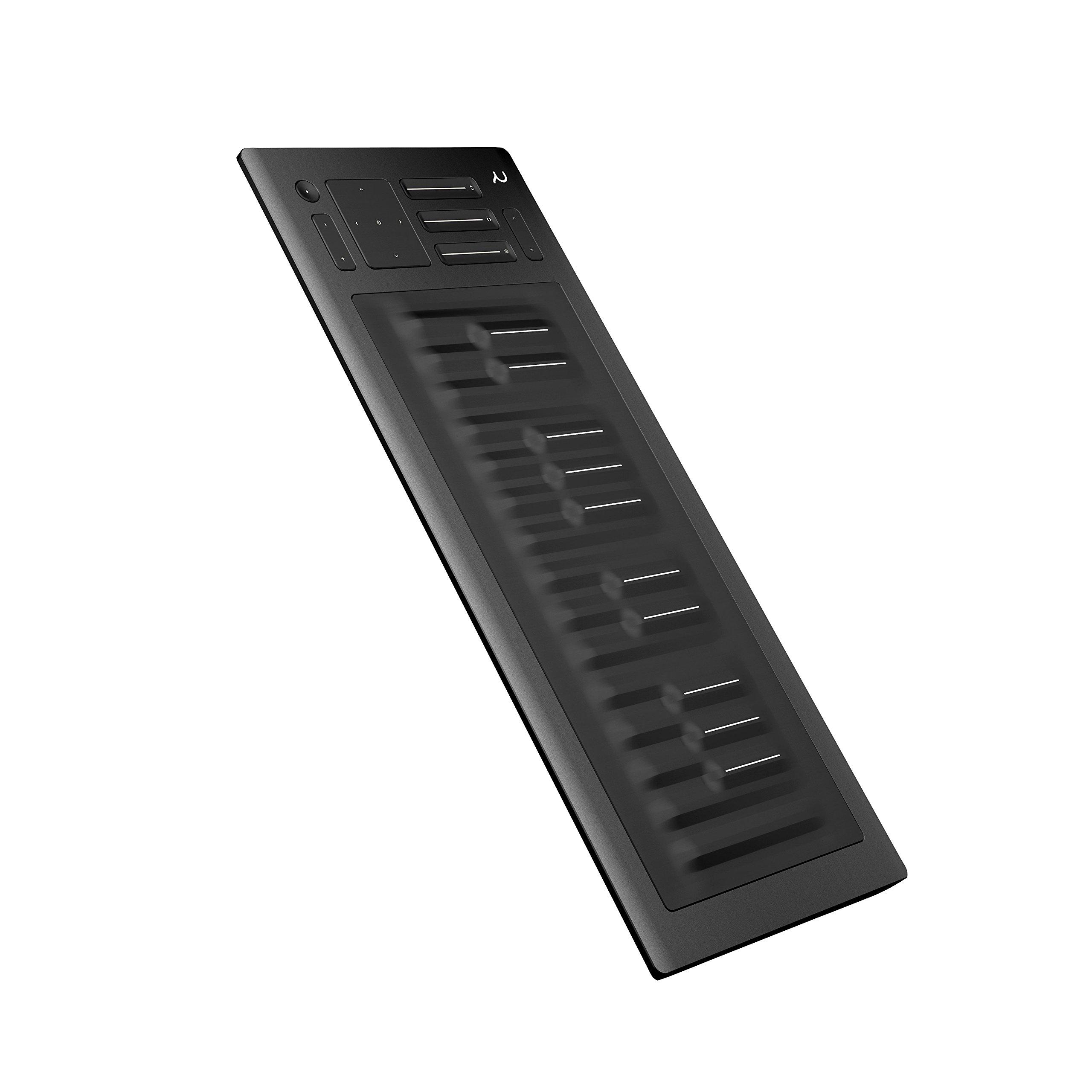 ROLI Seaboard Rise 25 25 Key Keyboard Controller by ROLI (Image #8)