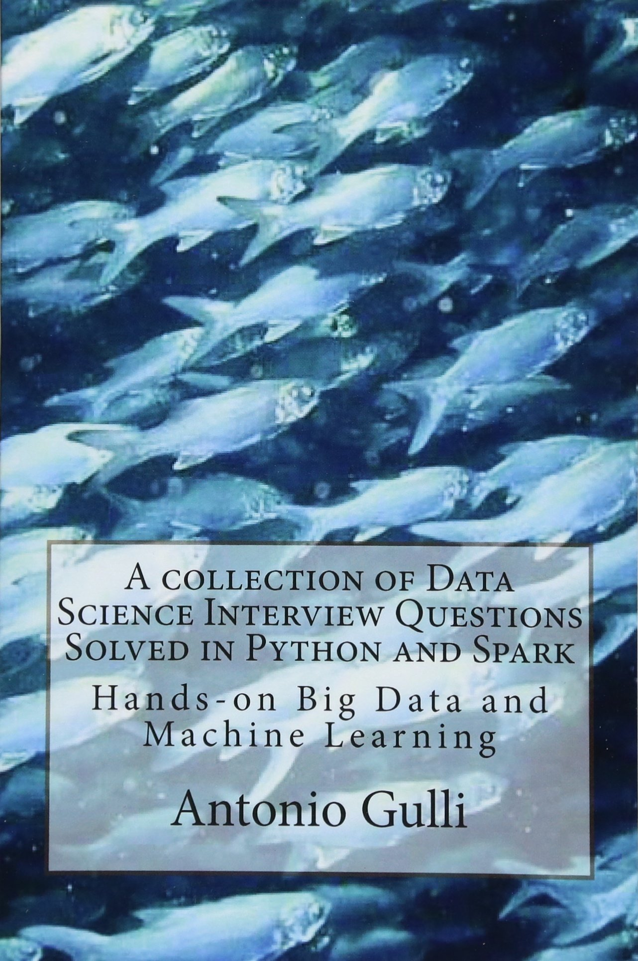 A collection of Data Science Interview Questions Solved in Python and Spark: Hands-on Big Data and Machine Learning (A Collection of Programming Interview Questions) (Volume 6)