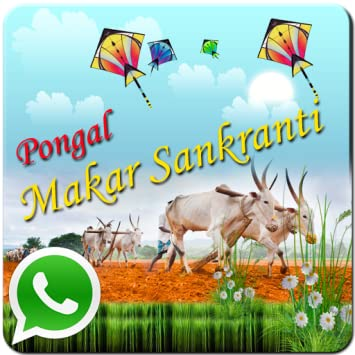 Amazon pongal greetings sankranti appstore for android pongal greetings sankranti m4hsunfo