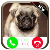 Incoming Fake Call From Pug Puppy Beauty - Free Fake Phone Calls ID PRO 2018 - PRANK FOR KIDS