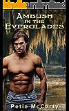 Ambush in the Everglades