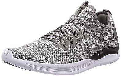 0ecaa3f6e47522 Puma Ignite Flash Evoknit, Chaussures de Running Homme, Gris (Steel Gray  Black)