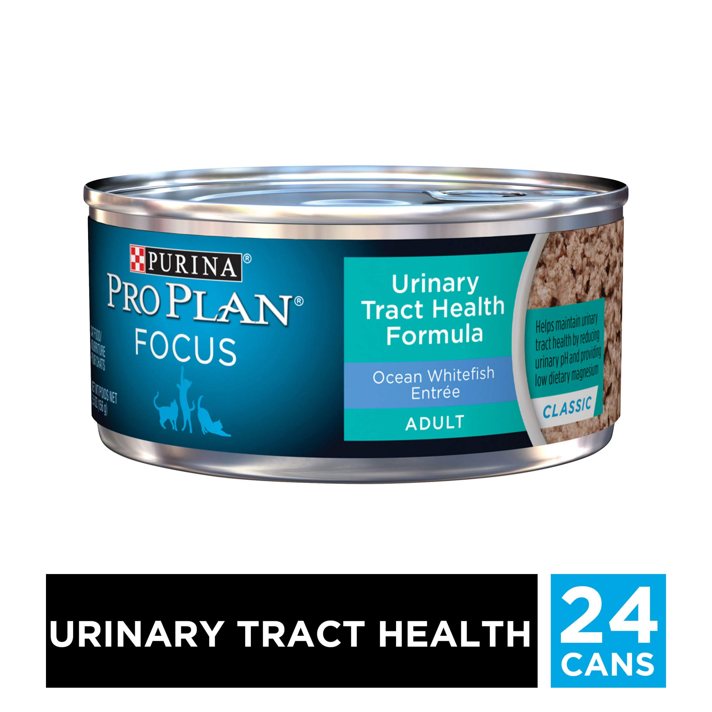 Purina Pro Plan Urinary Tract Health Pate Wet Cat Food, FOCUS Urinary Tract Health Formula Ocean Whitefish Entree - (24) 5.5 oz. Cans by PURINA Pro Plan