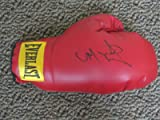 MIGUEL COTTO SIGNED BOXING GLOVE AUTHENTIC