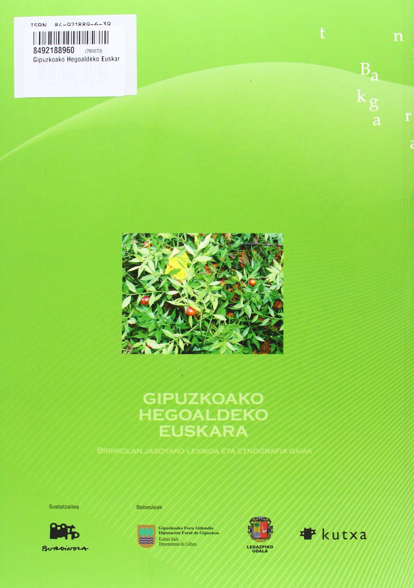 Gipuzkoako Hegoaldeko Euskara: Amazon.es: Aitor Azpiazu Ugalde: Libros