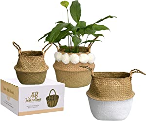 A&B Inspirations Seagrass Belly Basket - Set of 3 100% Natural Woven Belly Baskets for Home Decor - Stylish Eco-Friendly Indoor Plant Pot Cover, Laundry Bin, and Beach Picnic Basket