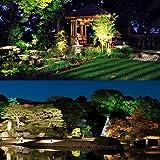 LightingWill 5W LED Landscape Lights, Warm White