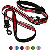 Kurgo 1505 6-in-1 Quantum Reflective Hands Free Dog Leash with Adjustable Waist Belt, One Size, Barn Red