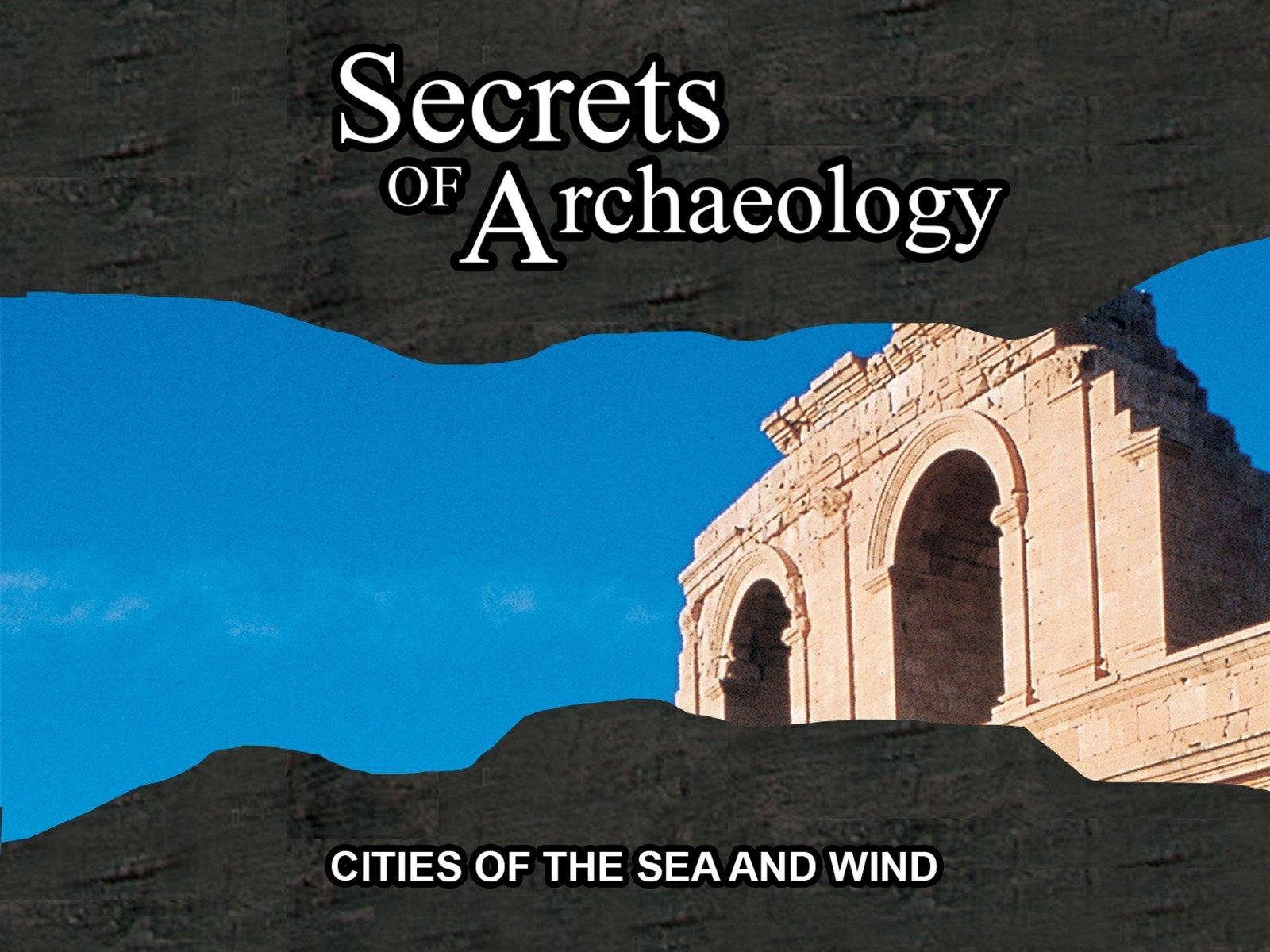 Amazon.com: Secrets of Archeology: Aldo Zappala, Robert Yuhas