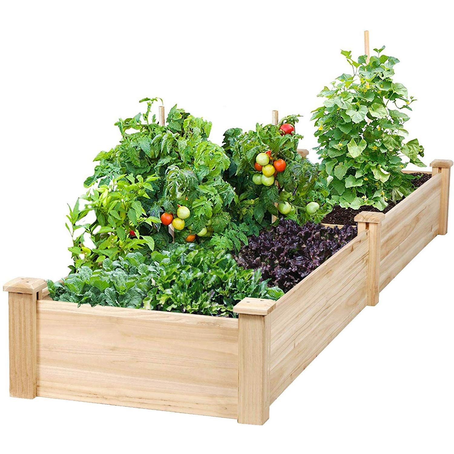 Buy Incbruce 4ft Wooden Raised Garden Bed Planter No Bolt Assembly Elevated Flower Bed Boxes Kit For Vegetable Flower Herb Gardening Natural Online At Low Prices In India Amazon In