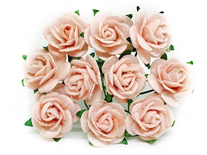 Amazon 12 blush pink paper roses mulberry paper flowers 12quot blush pink paper roses mulberry paper flowers miniature flowers mightylinksfo