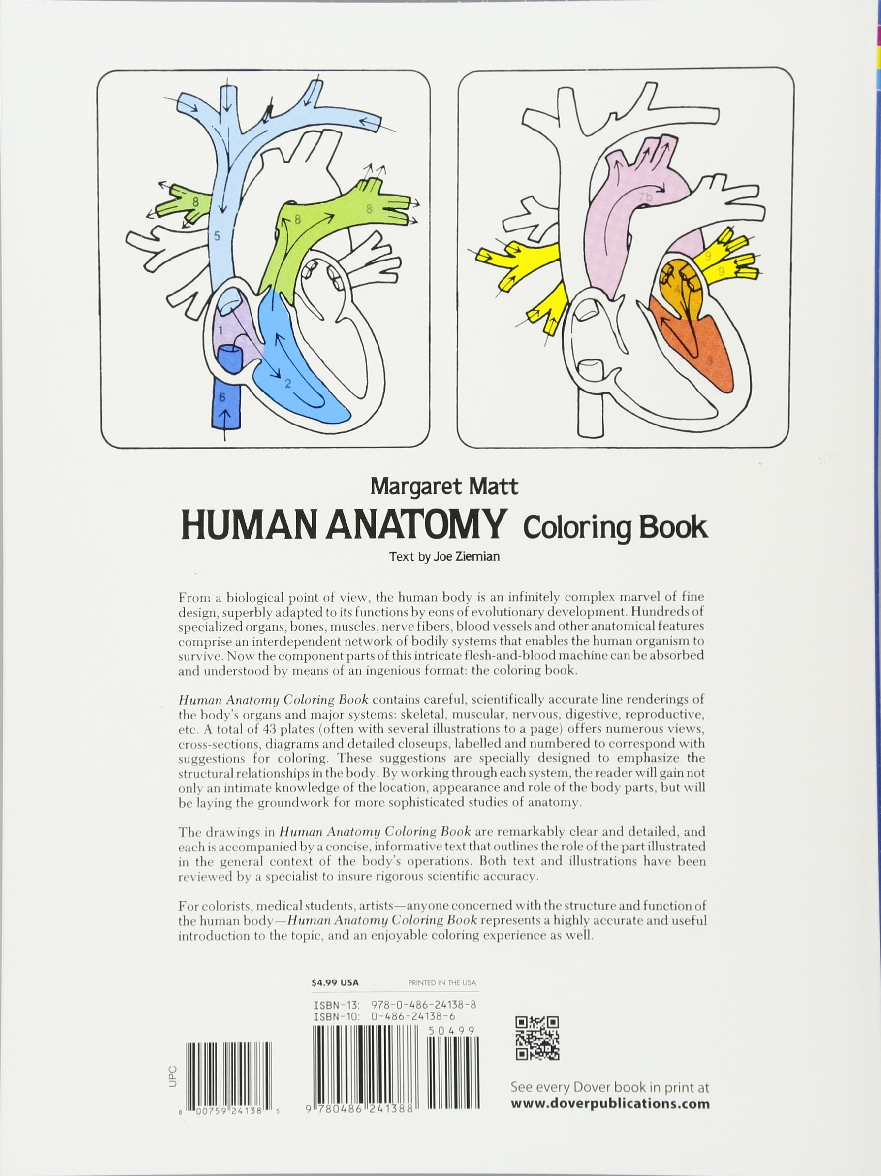 Human Anatomy Coloring Book Dover Childrens Science Books Margaret Matt Joe Ziemian 0000486241386 Amazon