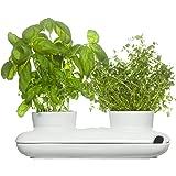Sagaform - Pot à Herbes Aromatiques Duo