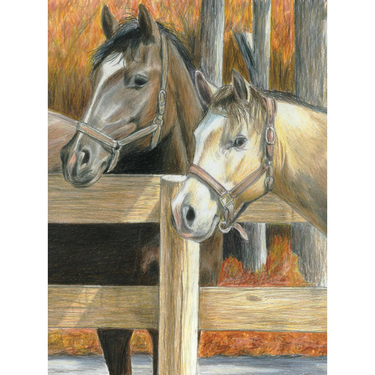 Bucks Pal Buck/'s Pal CPBNK-16 8.75 by 11.75-Inch Royal Brush Color Pencil by Number Kit