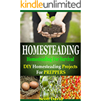 Homesteading: Homesteading For Survival: Homesteading Projects For Preppers