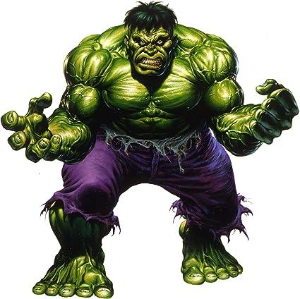 Incredible Hulk Iron On Transfer Light or Dark Fabrics 5 x 7 size