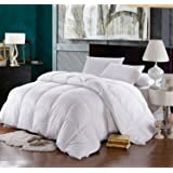 "Imported Goose Down and Feather Duvet for Extreme Cold Winters Of Mountains (90""X100"", White)"