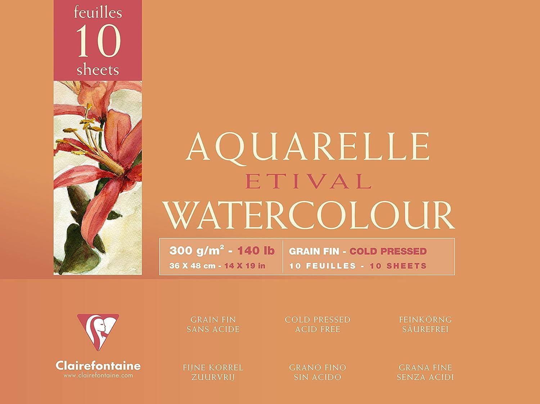 Clairefontaine 96572C Etival Aquarelle bloc collé 4 côtés 10F 30x40cm 300g grain fin Blanc C Rhodia Jardinage Papier pour aquarelle