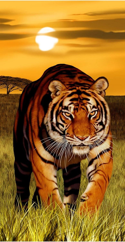 Tigre de Bengala León y leopardo (trilogía peligro toalla de playa (30