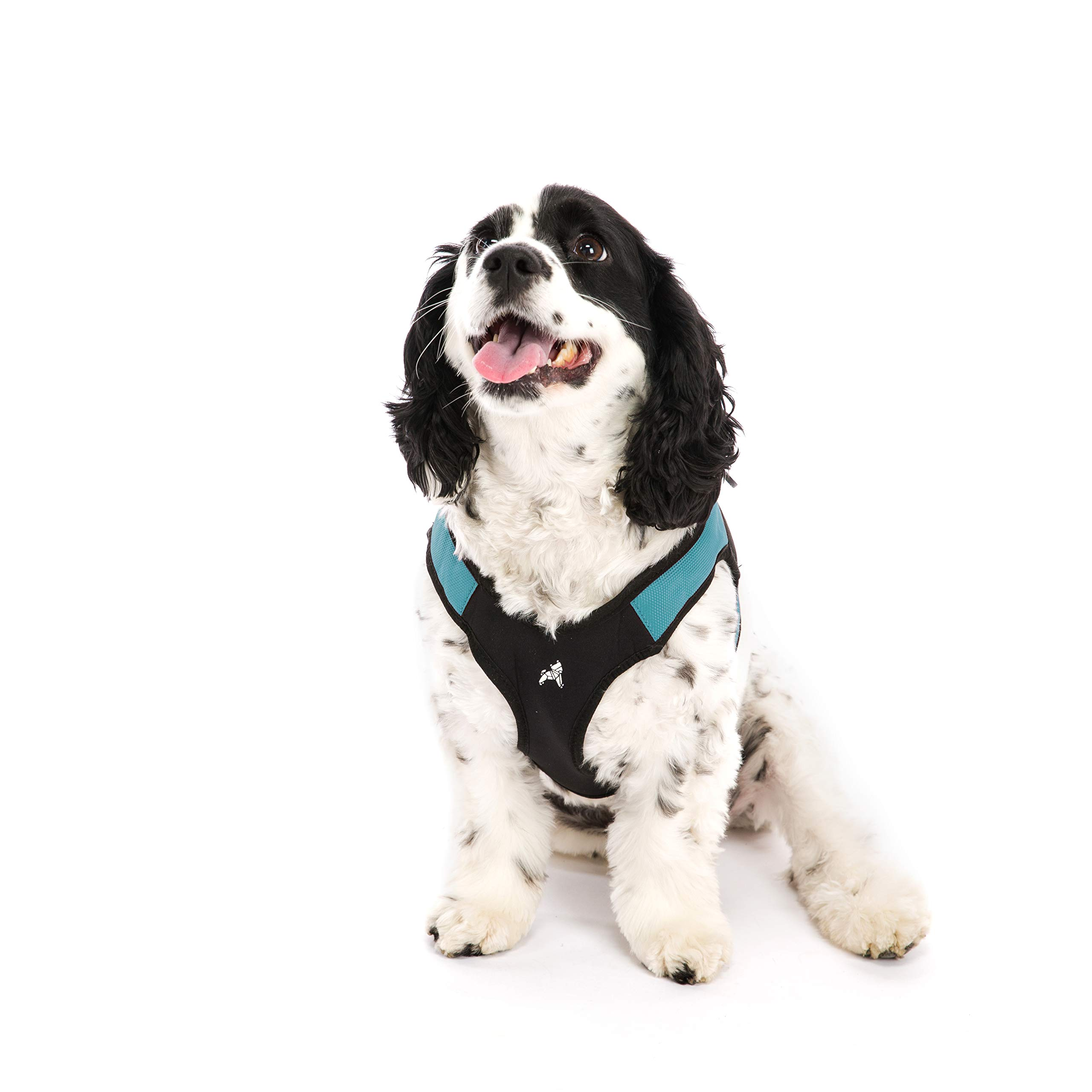 Gooby - Escape Free Easy Fit Harness, Small Dog Step-in Harness for Dogs That Like to Escape Their Harness, Turquoise, Large