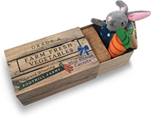 Foothill Toy Co. Matchbox Mice & Friends - 'Hopper The Garden Rabbit' Playset with Stuffed Bunny in a Vegetable Crate Bed
