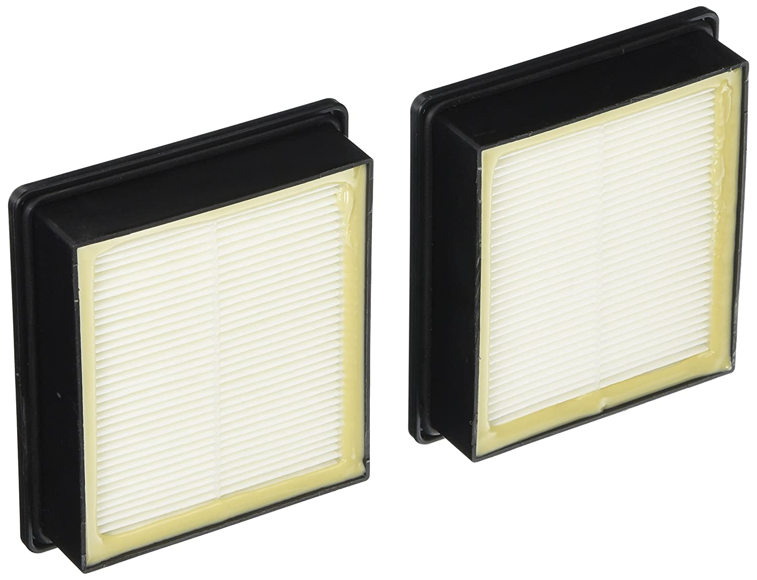 ProTeam 107315 HEPA Replacement Filter Twin Pack, HEPA Media Vacuum Filter