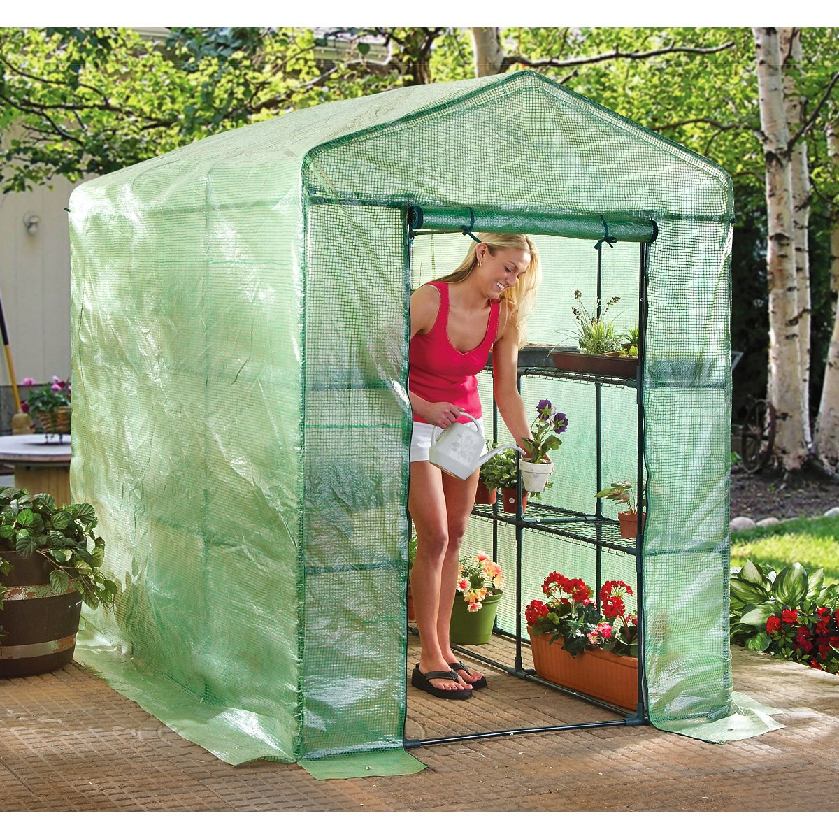 CASTLECREEK Deluxe Walk-in Greenhouse