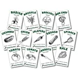 Organic Vegetable Seeds for Planting - 13 Varieties of Non GMO, Non Hybrid, Heirloom Seeds, Open Pollinated Home Garden Seeds