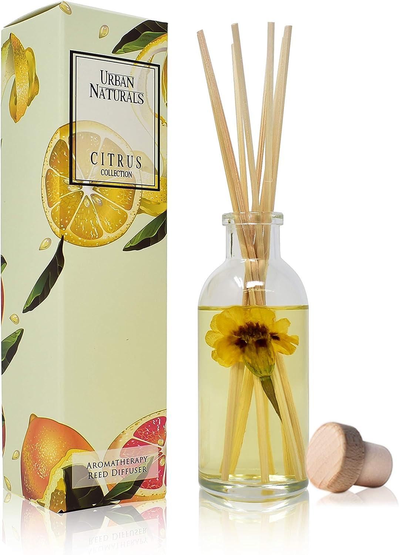 Urban Naturals Citron & Honey Home Fragrance Reed Diffuser Set   Sparkling Citron. Tangy Lemongrass. Dreamy Neroli. Golden Tupelo Honey   Best Way to Scent Your Home   Vegan.