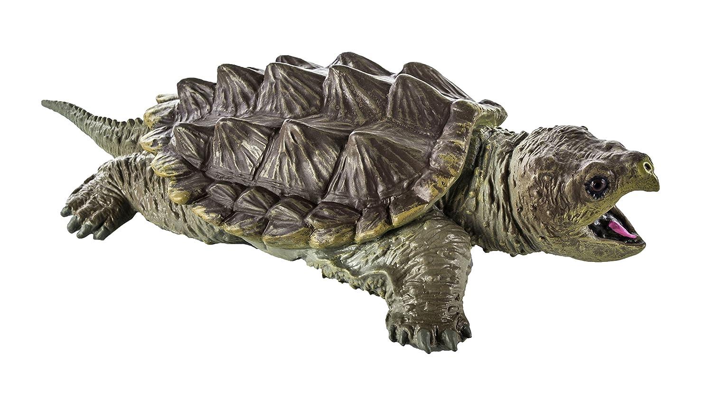 Warning turtles amp tortoises inc - Warning Turtles Amp Tortoises Inc 5