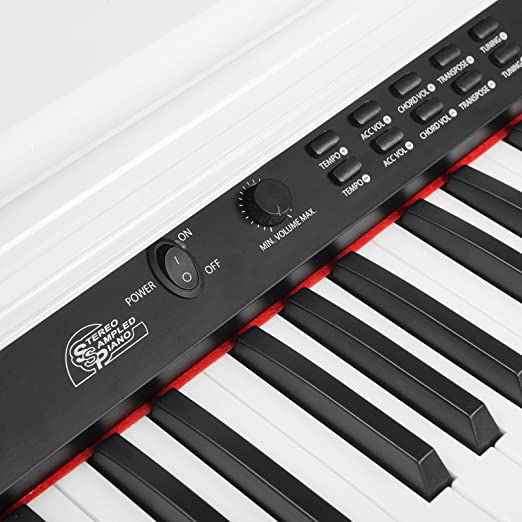 Amazon.com: LAGRIMA Digital Piano, 88 Key Electric Keyboard Piano for Beginner/Adults with Padded Piano Bench+Music Stand+Power Adapter+3-Pedal ...