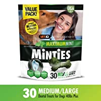 Deals on VetIQ Minties Dog Dental Bone Treats Dental Chews