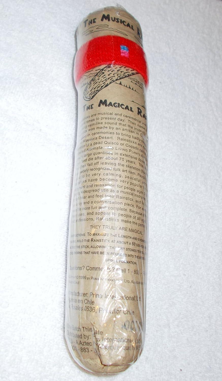 quisco Cactus 10 Inch palo: Amazon.es: Instrumentos musicales