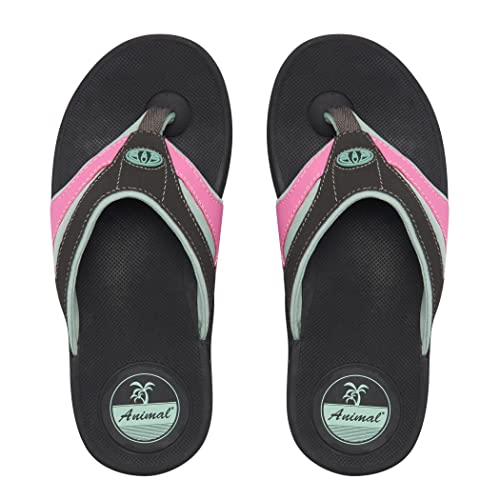 fb5c8ddf8e5 Animal Womens Fader FLIP Flop  Amazon.co.uk  Shoes   Bags