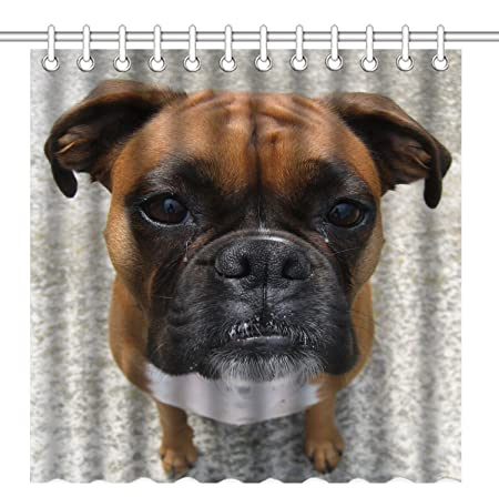 Wknoon 72 X Inch Shower CurtainNature Pet Animal Boxer Dog Puppy With Funny