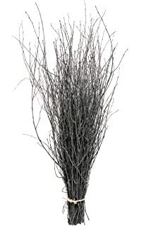 decorative coloured birch twigs and branches dark grey with silver 90cms 25 stems