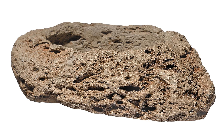 GARDENGOODZ 3/1027/1 Stone Planter, 8 inch, Pumice