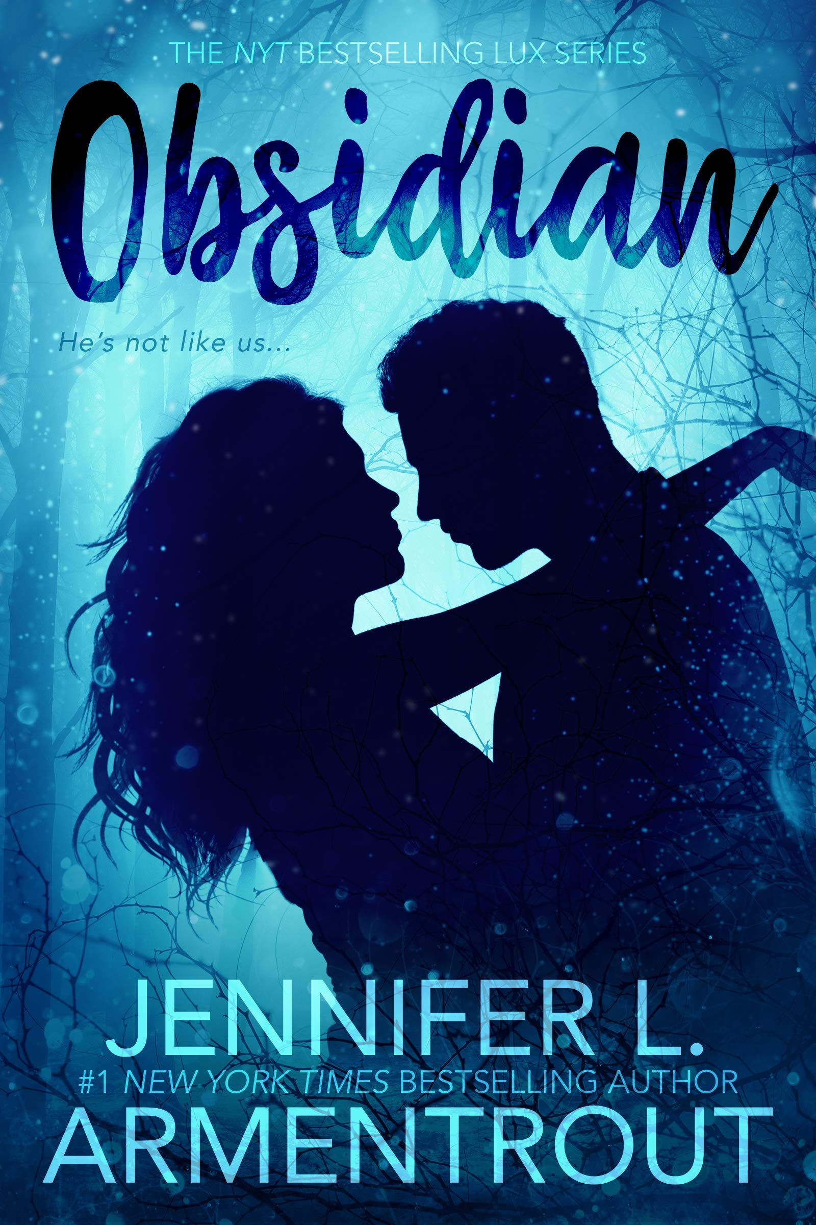 Amazon.com: Obsidian (Lux) (8601200679809): Armentrout, Jennifer L.: Books