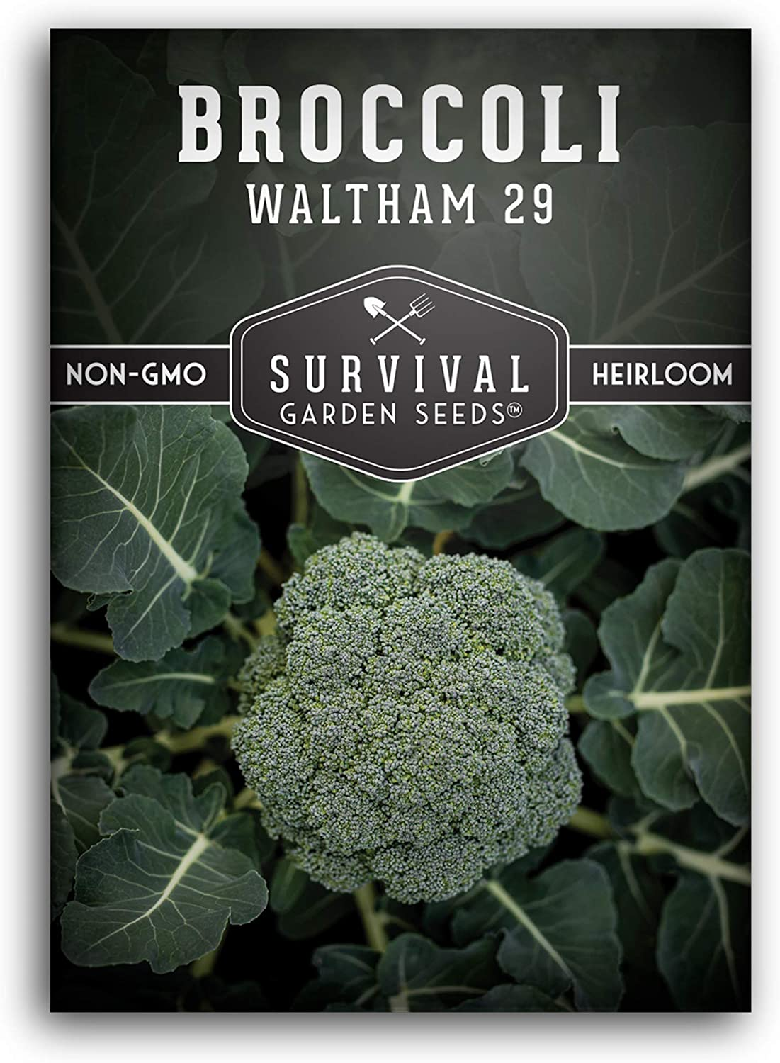 Survival Garden Seeds - Waltham 29 Broccoli Seed for Planting - Packet with Instructions to Plant and Grow Your Home Vegetable Garden - Non-GMO Heirloom Variety
