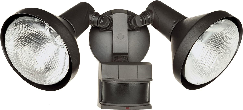 Heath Zenith Motion Sensing Security Light