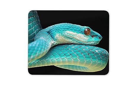 Viper azul de la serpiente alfombrillas de ratones Cojín ...