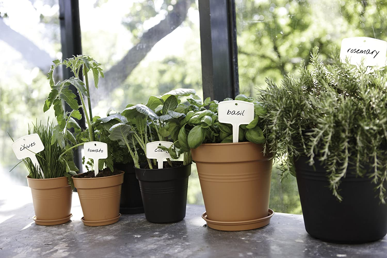 elho Green Basics Saucer Plato Verde Leaf 16,8X16,8X2,4 cm