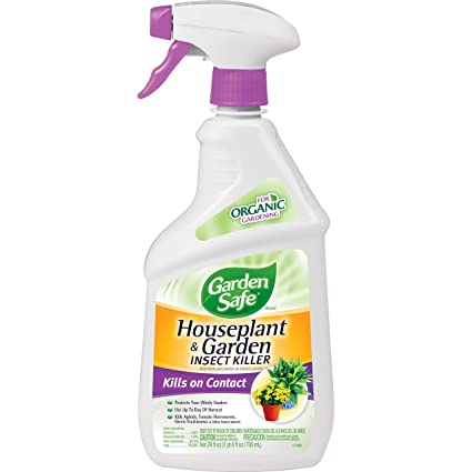 Amazon.com : Garden Safe 80422 Houseplant and Garden Insect Killer on outdoor insect spray, lawn insect spray, hibiscus insect spray,