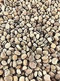 高麗人参は、一定の条件が繁栄し、成熟するために必要な非常にユニークな種子です。彼は家に大きな種子またはオーバーハングは、適切な形状を設けてもよい6ないし5のpH範囲を好みます。 2018-2019人参播種シーズンに向けて、あなたの種を入手!